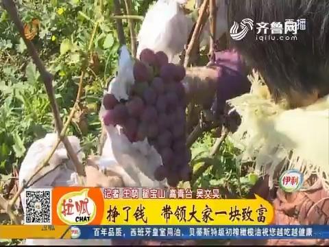 【小家大事】高青:冰葡萄 冬天采摘的葡萄