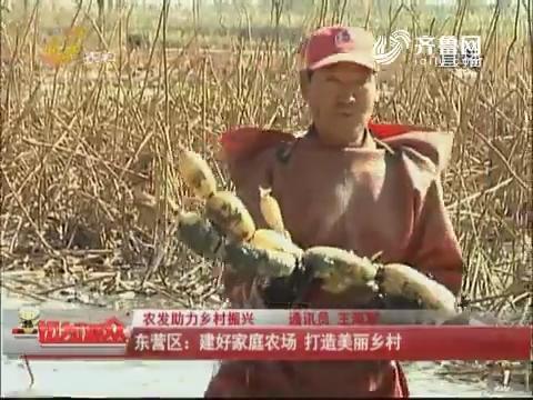 【农发助力乡村振兴】东营区:建好家庭农场 打造美丽乡村