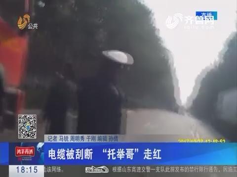 """潍坊:电缆被刮断 """"托举哥""""走红"""