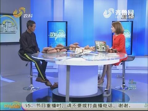 """20171103《农科直播间》:我是站长——唐爱龙 种地瓜""""薯我棒"""""""