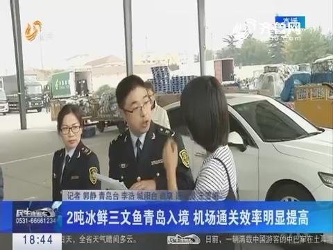 2吨冰鲜三文鱼青岛入境 机场通关效率明显提高