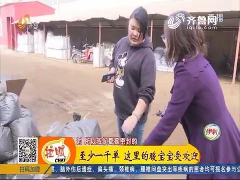"""【小家大事】青岛:""""双十一""""来临 车间热火朝天"""