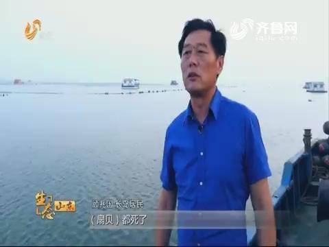 山东:加强生态修复 优化产业结构