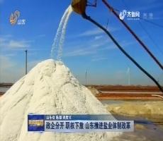 政企分开 职权下放 山东推进盐业体制改革