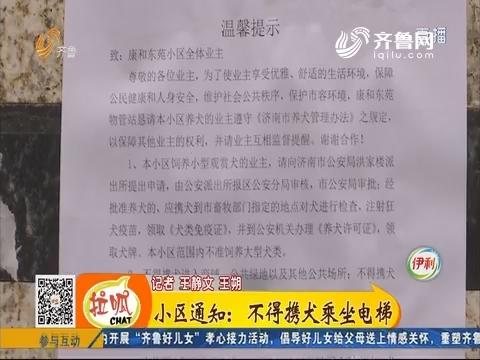 济南:小区通知 不得携犬乘坐电梯