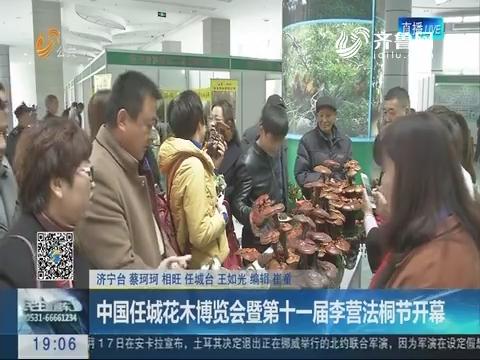 中国任城花木博览会暨第十一届李营法桐节开幕