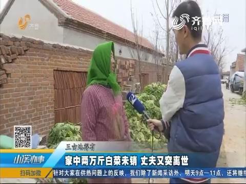 济南:家中两万斤白菜未销 丈夫又突离世