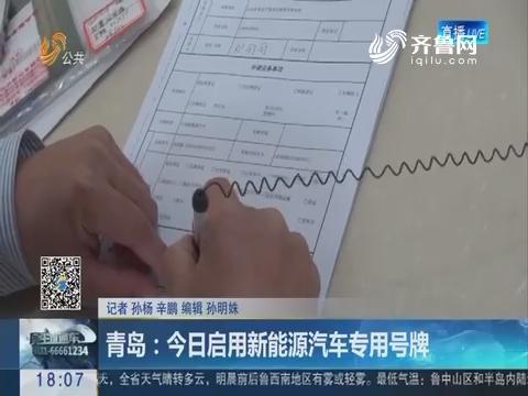 青岛:11月20日启用新能源汽车专用号牌