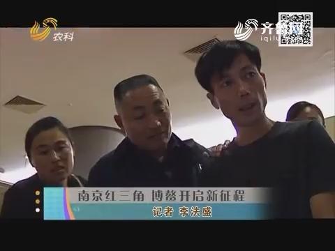 南京红三角 博鳌开启新征程