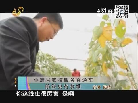 【小螺号农技服务直通车】防线虫有多难