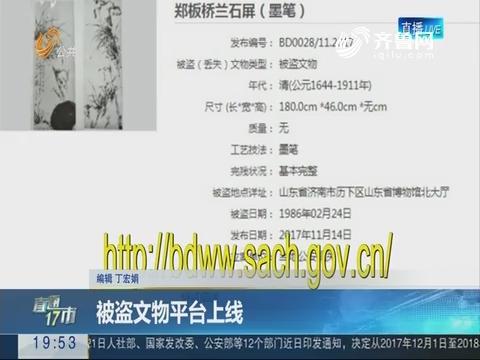 【直通17市】被盗文物平台上线