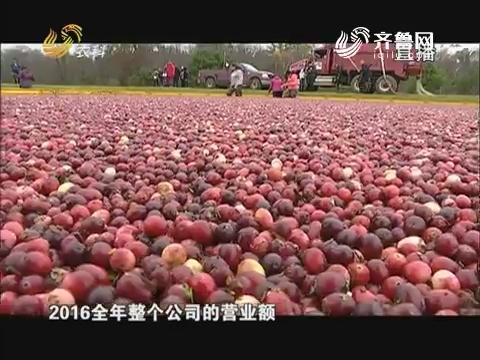 美国蔓越莓之旅(四)小镇上的蔓越莓博物馆