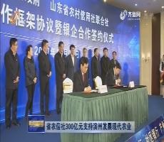 山东省农信社300亿元支持滨州发展现代农业