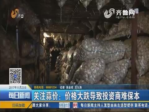 金乡:关注蒜价 价格大跌导致投资商难保本