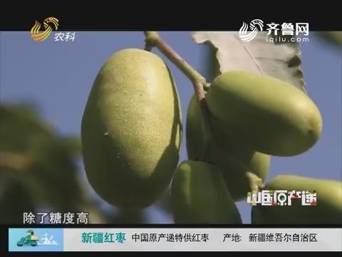 20171125《中国原产递》:新疆红枣