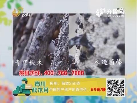 20171126《中国原产递》:青川秋木耳
