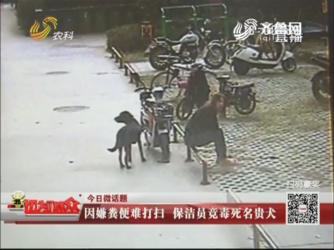 【今日微话题】淄博:因嫌粪便难打扫 保洁员竟毒死名贵犬