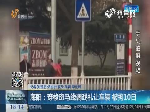海阳:穿梭斑马线调戏礼让车辆 被拘10日