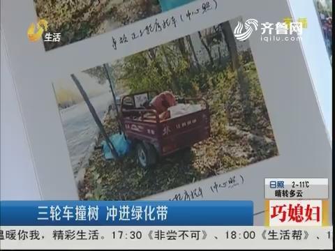 滕州:三轮车撞树 冲进绿化带