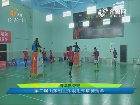 青岛队夺冠:第二届山东省业余羽毛球联赛落幕