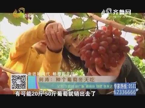 【走进新时代 畅想新生活】何涛:种个葡萄冬天吃