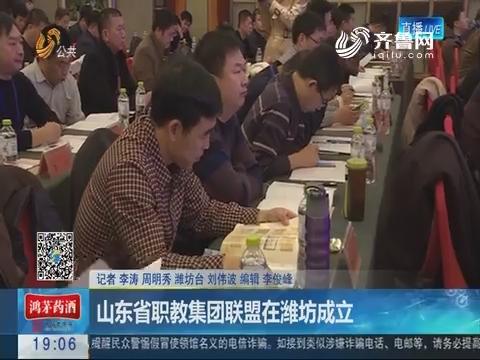 山东省职教集团联盟在潍坊成立