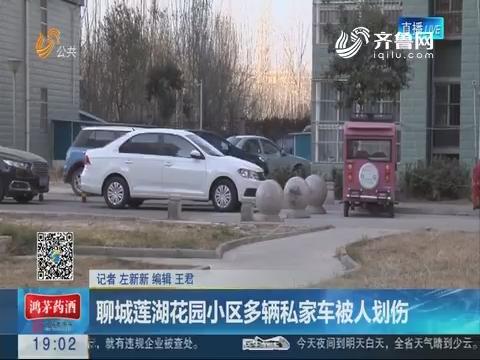聊城莲湖花园小区多辆私家车被人划伤