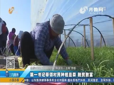 临清:第一书记带领村民种植韭菜 脱贫致富