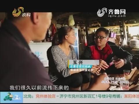 20171210《中国原产递》:手工红糖