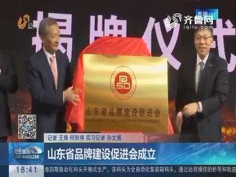 济南:山东省品牌建设促进会成立
