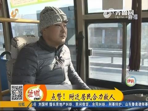 """【凡人善举】淄博:惊魂!路口遭遇""""疯狂""""的藏獒"""