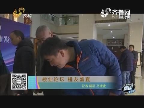 桃业论坛 桃友盛宴