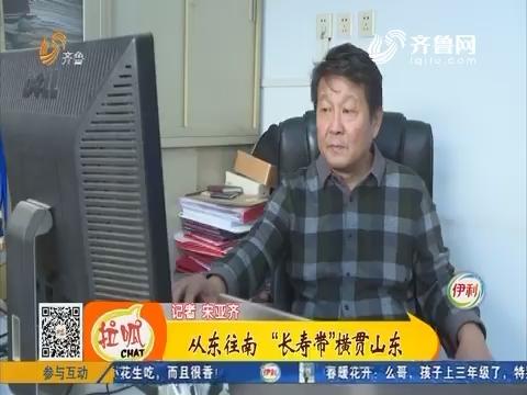 """【齐鲁新百寿图】从东往南""""长寿带""""横贯山东"""