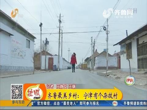 齐鲁最美乡村:宁津有个杂技村