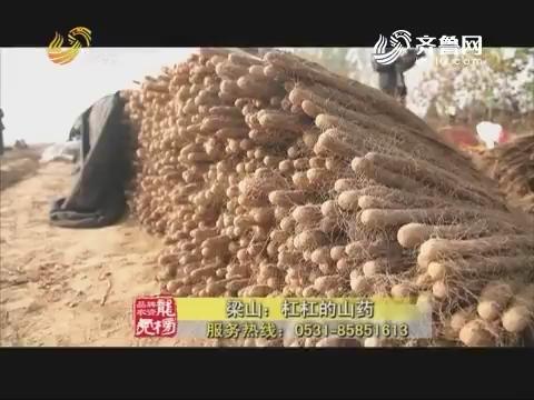 20171218《品牌农资龙虎榜》:梁山——杠杠的山药