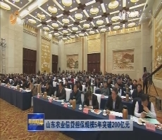 山东农业信贷担保规模5年力争200亿元