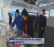 邢善萍到淄博、潍坊督查支持非公有制经济健康发展工作