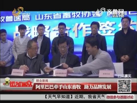 【群众新闻】阿里巴巴牵手山东畜牧 助力品牌发展