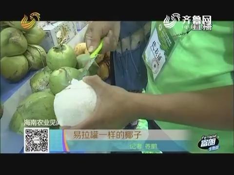 【海南农业见闻】易拉罐一样的椰子