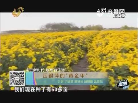 """【走进新时代畅想新生活】岳银萍的""""黄金甲"""""""