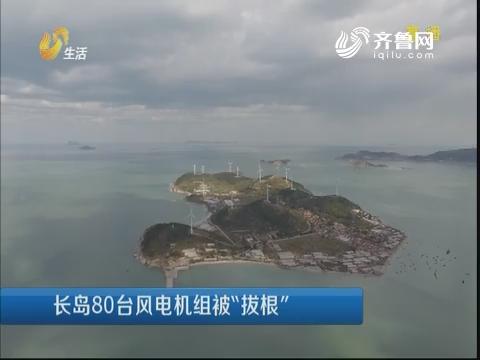 """长岛80台风电机组被""""拔根"""""""