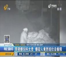 郓城:怪事?村民家门口玉米频被偷