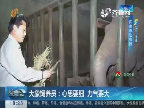 【闪电连线】济南:大象饲养员  心思要细力气要大