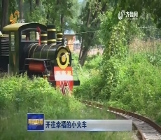 开往幸福的小火车