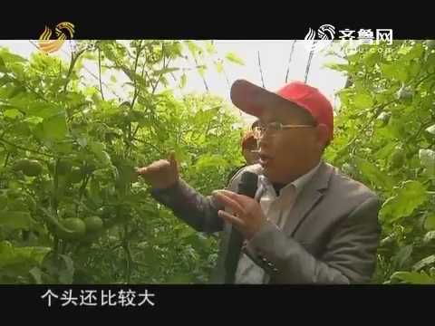 20171225《品牌农资龙虎榜》:40集科普系列片《让土壤更健康》--有机肥三(下)