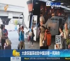 大象踩踏事故致中国游客一死两伤