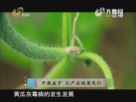 20171226《当前农事》:中澳益宇 让产品效果先行
