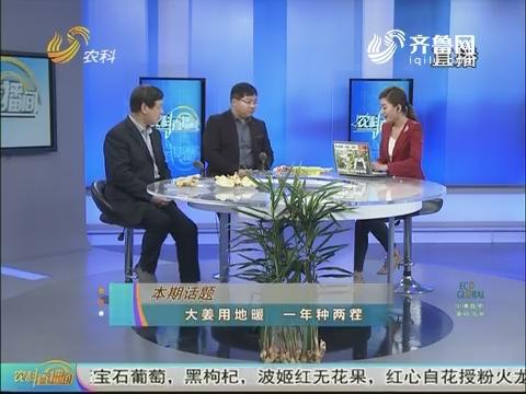 20171228《农科直播间》:大姜用地暖 一年种两茬