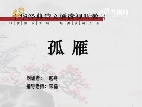 中华经典诵读:孤雁