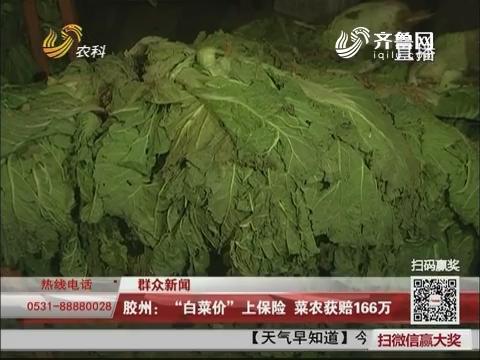 """【群众新闻】胶州:""""白菜价""""上保险 菜农获赔166万"""